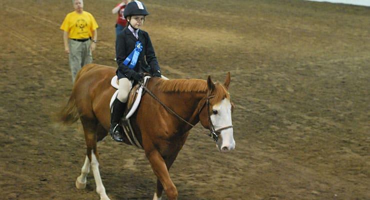 Equestrian Tournament - SONC